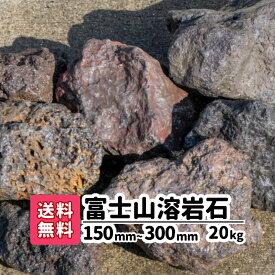 【送料無料】20kg 富士山溶岩石 150mm〜250mm ロックガーデン 庭 アプローチ おしゃれ ガーデニング アクアリウム 溶岩石 メダカ 熱帯魚 水槽レイアウト 駐車場 花壇 低床 庭石