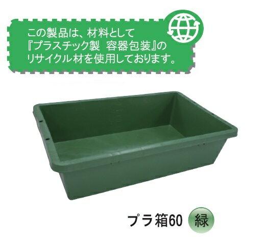 プラ箱60 緑