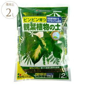 葉っぱ喜ぶ 観葉植物の土 2リットル 観葉植物 専用 用土 マグネシウム 光合成 助ける 葉 濃くなる 室内でも 軽い 安心 初期肥料入り