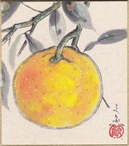 中谷文魚『柚子』ミニ色紙絵(寸松庵)