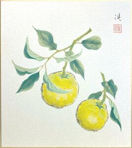奥田 渓『柚子』色紙絵