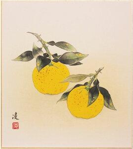 中村 凌『柚子』色紙絵