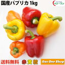【送料無料】国産 パプリカ 赤・黄・オレンジ アラカルトセット1kg A品(5〜6個・個包装・化粧箱入)【産直】【野菜】…