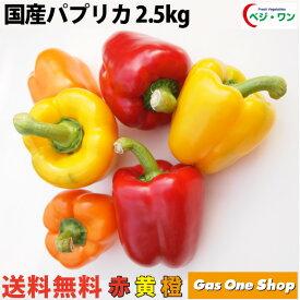 【送料無料】国産 パプリカ 赤・黄・オレンジ アラカルトセット2.5kg A品(13〜15個・個包装・化粧箱入)【産直】【野菜】【安全】