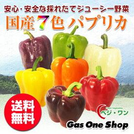 ベジ・ワン 国産パプリカ 7色セット(赤・黄・オレンジ・紫・茶・白・緑・白) 2.5kg A品(13〜15個・個包装・化粧箱入)