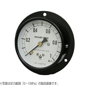 木幡計器製作所 圧力計 φ75/D型 DU 3/8 75 (0-6.0MPa)