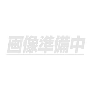 スポットマーカー (筆タイプ) 白 (5本入) SM-3