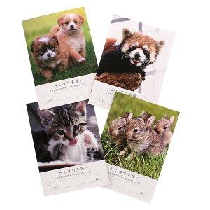 おくすり雑貨 お薬手帳 どうぶつ 4種類 詰め合わせ セット おくすり手帳 かわいい 犬 猫 ウサギ レッサーパンダ