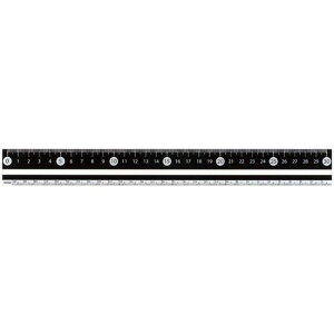 RF 見やすい白黒定規 30cm ブラック APJ281B - メール便対象