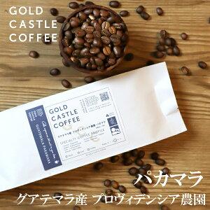 【600g グアテマラ産プロヴィデンシア農園パカマラ 】リニューアル 200gx3個 約60杯分 送料無料【豆・粉選べます】コーヒー豆 トップスペシャルティコーヒー coffee 珈琲 自家焙煎 酸味