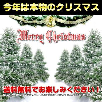 【送料無料】「もみの木クリスマスツリー購入」今年こそ!本物モミの木の生ツリー!【高さ:100cm】届いて・植えて・すぐ綺麗!購入はお早めに!鉢植えではないです。トウヒではない本物!【代引き不可】【メッセージカード不可】【離島・沖縄配送不可】