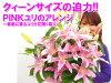 【お祝い花】クィーンサイズの誘惑!PINKユリのアレンジ引越し祝い快気祝い結婚祝い【メッセージカード無料】【突破1205】