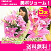 ユリの花束送料無料!BIG!PINKユリの花束♪お祝いに贈って嬉しい3980円!誕生日プレゼントbirthdaypresent【メッセージカード無料】