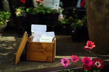 【送料無料】オンジが作る「お花の救急箱」肥料や活力剤、虫除け!これ一つあれば、お花を咲かせたり、虫から守ったり、治療したりすることができます!
