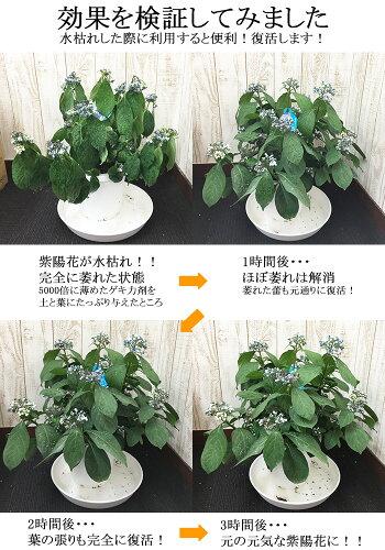 濃縮ゲキ力剤EX植物のパフォーマンスを引き出す活力剤【メール便送料無料】