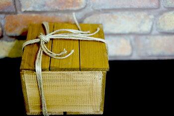 【送料無料】不思議で美しいインテリア「旅人の木の実」選ばれし勇者なあなたへ!特別なギフトや贈り物にも!【ラッピング・メッセージカード可能】【メール便不可】