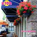 【送料無料】【2鉢セット】よく咲くアイビーゼラニウム カリオペ 4.5号鉢 5号鉢 と、仲間たち全10種 こんもりしなが…