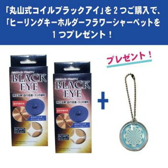With Maruyama-type coil black eye (I get + 貼替 with six with 30 pieces of seals) *2 + flower sherbet healing key ring (shipment: on the date and time at time designation impossibility)