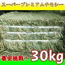 最安挑戦 牧草 チモシー ダブルプレス 30kg 1番刈り(アメリカ産) 令和元年収穫 圧縮 スーパープレミアムチモシー 小動…