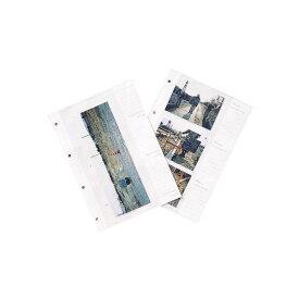 マイゾックス 工事写真帳セット (表紙5組・とじ紐5本・台紙50枚) A-L6WS 再生グリーン A4 [工事写真 現場写真 工事アルバム]
