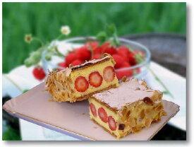 【 いちご の季節限定】 苺 の ミルフィーユ 約22cm×7cm アーモンドスライス→パイ アーモンド不使用です イチゴ 【楽ギフ_包装】