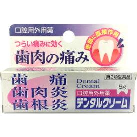 【第2類医薬品】「定形外送料無料」「ポイント20倍」AJD デンタルクリーム 5g(歯肉炎などに)