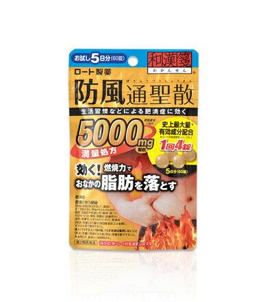 【第2類医薬品】ロート 和漢箋 防風通聖散錠満量処方 60錠