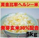 【新米】無農薬の発芽玄米配合黄金比率ヘルシー米5kg【発芽玄米30%配合】無洗米/白米も無農薬/送料無料発芽のチカラ…