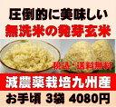 【新米】白米モード楽々炊飯!圧倒的に美味しい減農薬の玄氣1.5kg×3袋(4.5kg真空パック)【減農薬 玄米 発芽玄米 無…