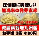 白米モード楽々炊飯!圧倒的に美味しい減農薬の玄氣1.5kg×3袋(4.5kg真空パック)【減農薬 玄米 発芽玄米 無洗米】佐…