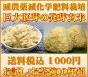 【1000円ポッキリ送料無料】【至高の玄氣】減農薬・巨大胚芽米の発芽玄米750g(5合)お試しサイズ白米モード楽々炊飯…