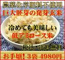 【究極の玄氣】無農薬・巨大胚芽の発芽玄米圧倒的に美味しい無農薬の玄氣1.5kg×3袋(4.5kg真空パック)白米モード楽…