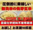 【新米】無農薬の発芽玄米750g(約5合)【お試しサイズ】白米モード楽々炊飯!圧倒的に美味しい無農薬の玄氣750g(約5…