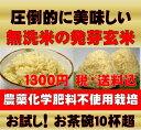 無農薬の発芽玄米750g(約5合)【お試しサイズ】白米モード楽々炊飯!圧倒的に美味しい無農薬の玄氣750g(約5合)真空…