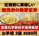 無農薬の発芽玄米白米モード楽々炊飯!圧倒的に美味しい無農薬の玄氣1.5kg×3袋(4.5kg真空パック)【無農薬 玄米 発…