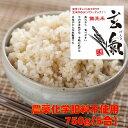 無農薬の発芽玄米(約5合)【お試しサイズ】白米モード楽々炊飯!圧倒的に美味しい無農薬の玄氣750g(約5合)真空パッ…