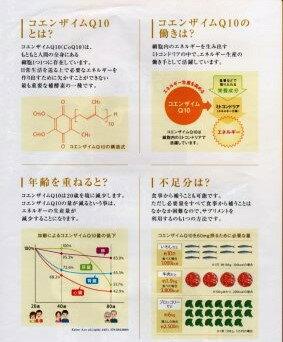 【送料無料】コエンザイムq10(1袋/30粒入)1か月分話題のDHA・EPA配合