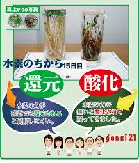 ◆定期購入◆SOD水素サプリ『Zeo7』120粒話題のゼオライト(ケイ素)サプリ「悟空の水130」2本プレゼント付き