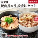 元気豚 焼肉丼&生姜焼丼セット【送料無料】【千葉県産豚肉】【三元豚】