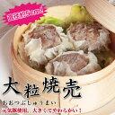 元気豚 大粒肉焼売 50g×6個入り【千葉県産豚肉】【三元豚】