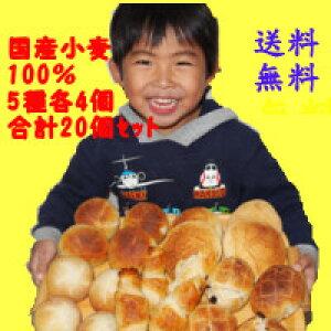 国産小麦ふくらむ魔法の冷凍パン 5種20個入りセット 送料無料 無添加 代引不可 おためし 冷凍パン生地 解凍・発酵不要 冷凍のまま約15分で焼きあがります 特許製法 バターボ