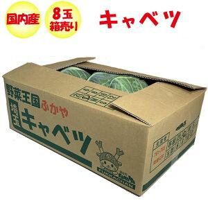 キャベツ 8玉 Lサイズ/約9.6kg〜箱売り【季節野菜 11月〜5月 送料別 常温発送/クール便(気温によって配送方法変更)】