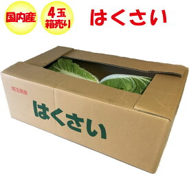 はくさい Lサイズ 4玉 1.8kg以上/玉 箱売り【季節野菜 11月〜2月 送料別 常温発送】
