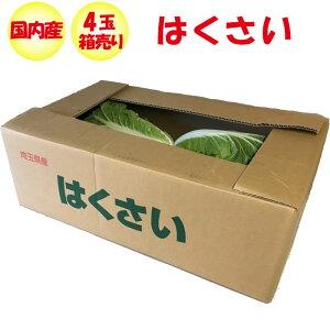 はくさい Lサイズ 4玉 1.8kg以上/玉 箱売り【送料別 常温発送 季節野菜 11月〜2月】