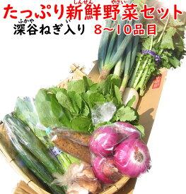 深谷ねぎ入り・たっぷり新鮮野菜セット 8〜10品目【送料無料 常温発送/クール便(気温によって配送方法変更)】