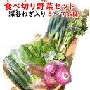 食べ切り野菜セット 5〜7品目 (深谷ねぎ入り)【送料無料】