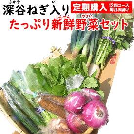 新鮮野菜セット 8〜10品目 (深谷ねぎ入り)定期購入【毎月 年12回コース 送料無料 常温発送/クール便(気温によって配送方法変更)】