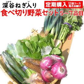 新鮮野菜セット 5〜7品目 (深谷ねぎ入り)定期購入【毎月 年12回コース 送料無料 常温発送/クール便(気温によって配送方法変更)】
