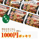 【 1000円ポッキリ 】酵素玄米 お試し セット 【 レトルト タイプ 】 2パック(熟成3日) ×125g 酵素 玄米 自家産 新潟…