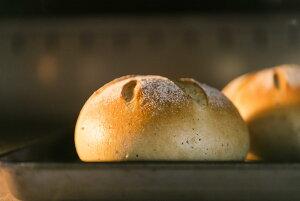 農家直送!<プレミアム玄米ペーストカンパーニュ> 2個セット 無添加 冷凍パン 低カロリー 低糖質 糖質制限 お取り寄せ パン おきかえ 食パン プレゼント 贈り物 玄米パン 添加物不使用 伊